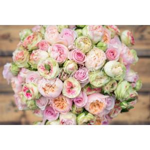 """Букет из роз """"Прима"""""""