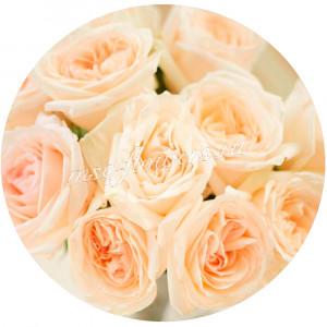 Роза Вайт Охара